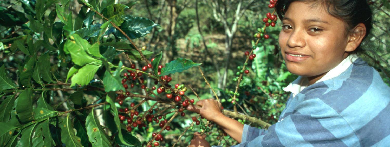 Kaffee_Peru_Nicaragua-GENTE_17_Foto_GEPA_A.Vargas